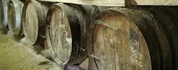 Image d'une cave pour le coin recherche pour un domaine viticole